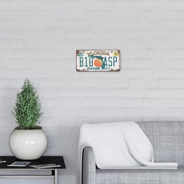 plaque-immatriculation usa florida decors